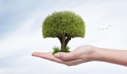 Venture capital jako źródło finansowania przedsiębiorstwa